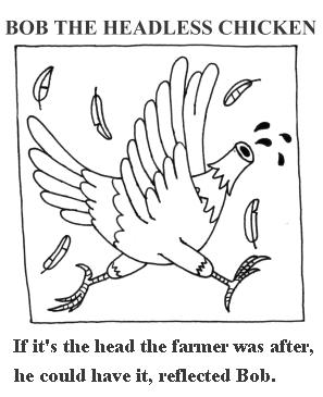 Bob the headless chicken 1